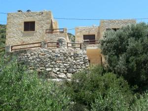 houses olives